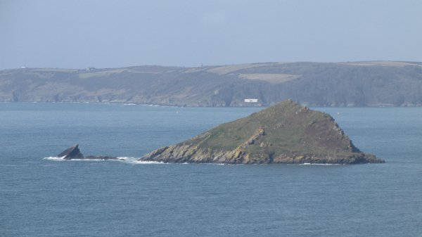 The Mewstone in Wembury bay - viewed from the coastal path.