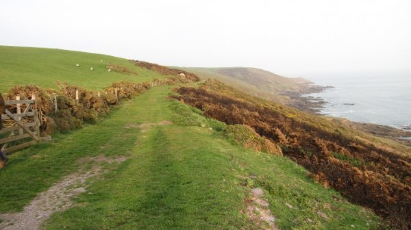 Walk the coast - Gara towards Warren